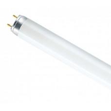 Лампа линейная люминесцентная ЛЛ 18Вт Т8 G13 765 L   4008321959669   OSRAM