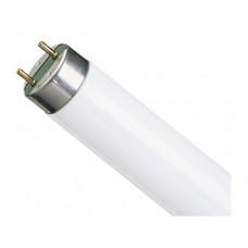 Лампа линейная люминесцентная ЛЛ 18Вт Т8 G13 840 L LUMILUX   4008321581297   OSRAM