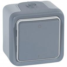 Plexo Серый Выключатель 2-х полюс. кнопочный наружный монтаж 10А (в сборе) IP55   069717   Legrand