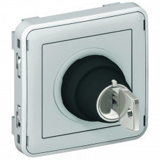 Plexo Серый Выключатель с ключом 2-х поз. 2НО IP55 | 069534 | Legrand