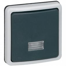 Plexo Серый Переключатель 1-клавишный 2-х полюсный с подсв. встраиваемый 10А IP66   090484   Legrand