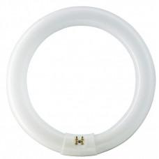 Лампа TL-E 22W/54-765 1CT/12 | 928026205460 | PHILIPS