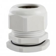Сальник PG36-(Dпроводника 24-32мм)-IP54 | 143111 | КЭАЗ