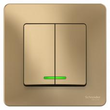 Blanca С/У Титан Выключатель 2-клавишный с подсветкой, 10А, 250B   BLNVS010514   Schneider Electric