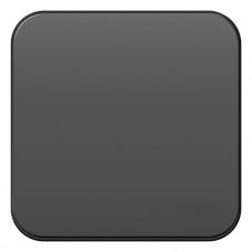 Blanca О/У с изол. пласт. Антрацит Переключатель 1-клавишный 10А, 250B | BLNVA106016 | Schneider Electric