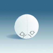 Simon 88 Клавиша (2 шт) для выключателя двухклавишного кнопочного для управления жалюзи без блокировки, с пик | 88029-32 | Simon