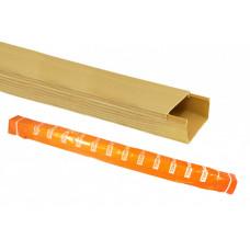 Кабель-канал 100х60 желтая сосна 3D (12м) | SQ0402-0610 | TDM